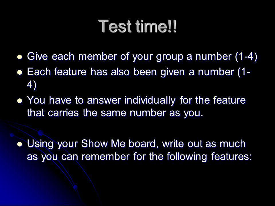 Test time!! Give each member of your group a number (1-4)
