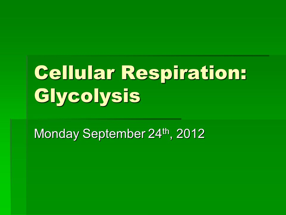 Cellular Respiration: Glycolysis