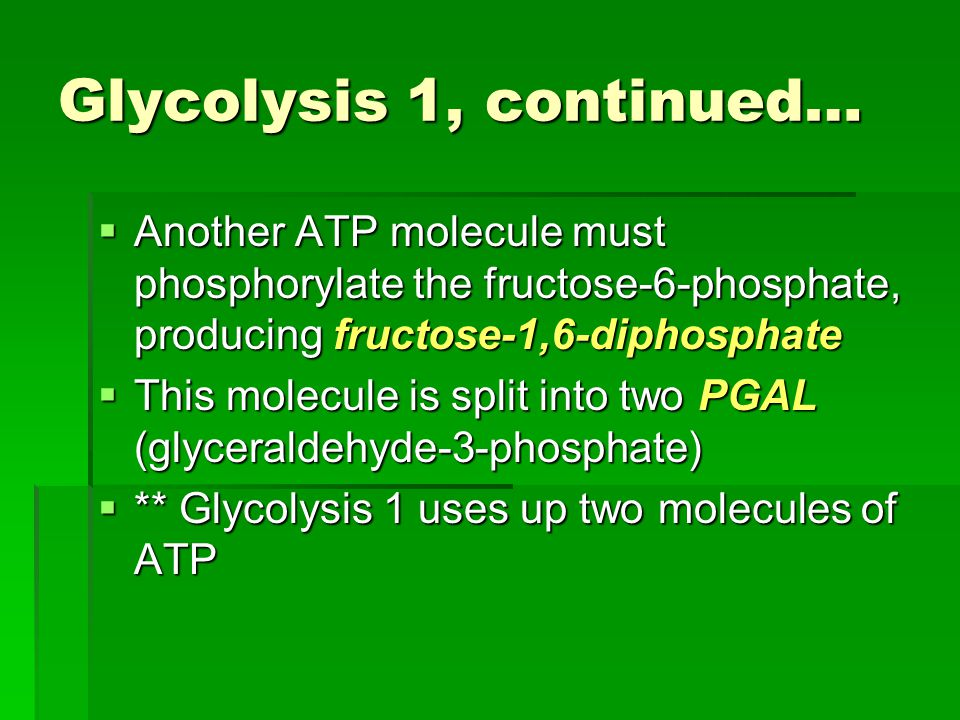 Glycolysis 1, continued…