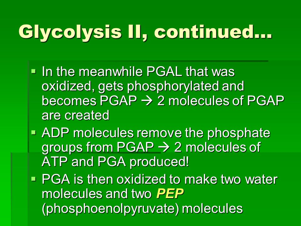 Glycolysis II, continued…