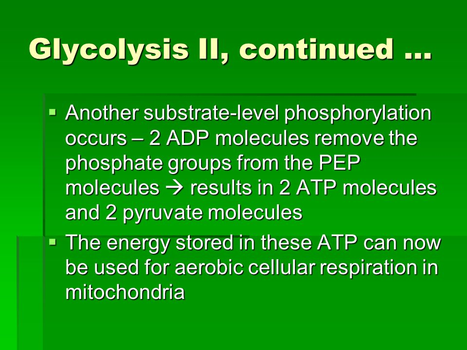 Glycolysis II, continued …