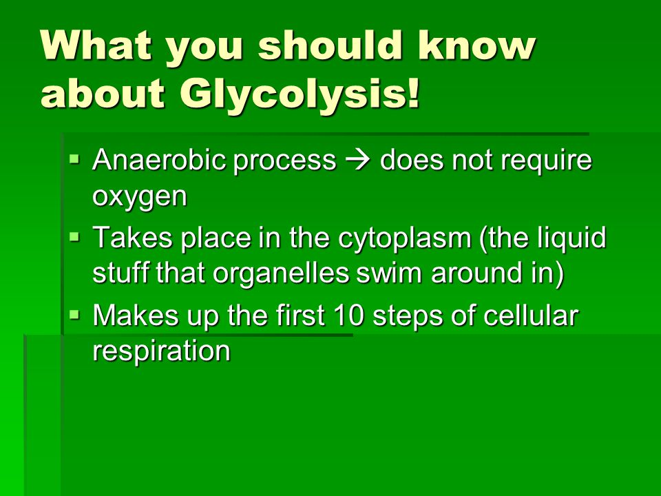 What you should know about Glycolysis!