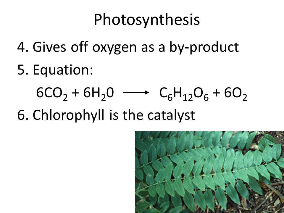 Photosynthesis 4. Gives off oxygen as a by-product 5. Equation:
