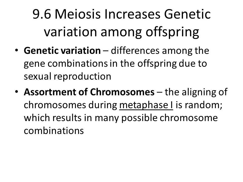 9.6 Meiosis Increases Genetic variation among offspring