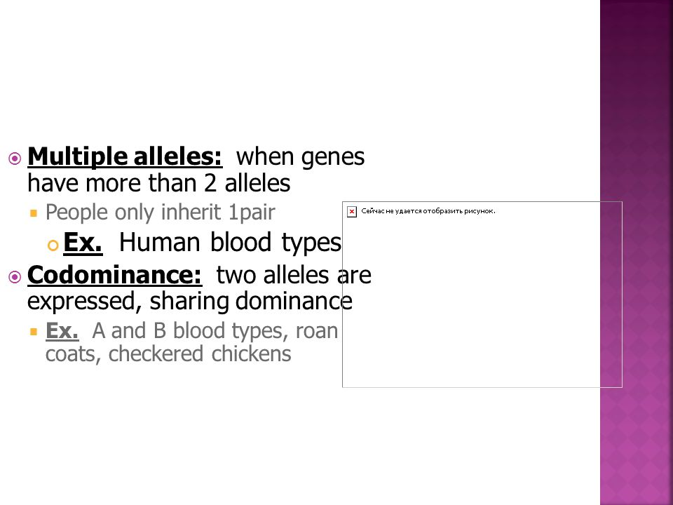 Multiple alleles: when genes have more than 2 alleles