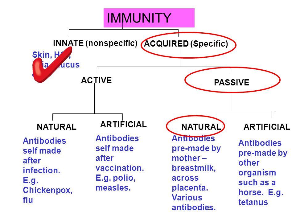 IMMUNITY INNATE (nonspecific) ACQUIRED (Specific)