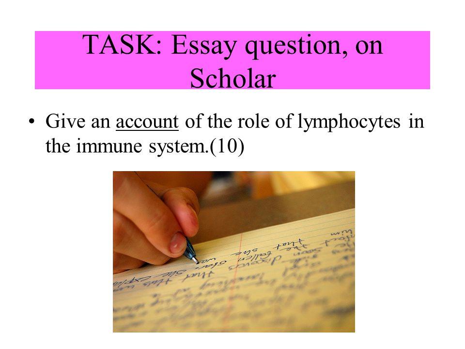 TASK: Essay question, on Scholar
