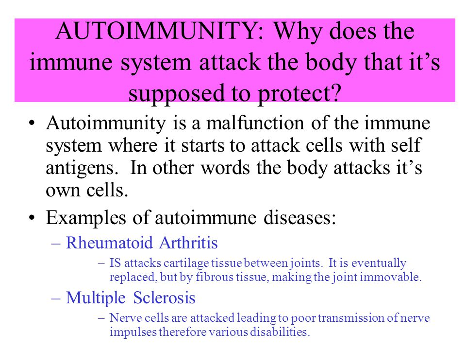 AUTOIMMUNITY: Why does the immune system attack the body that it's supposed to protect