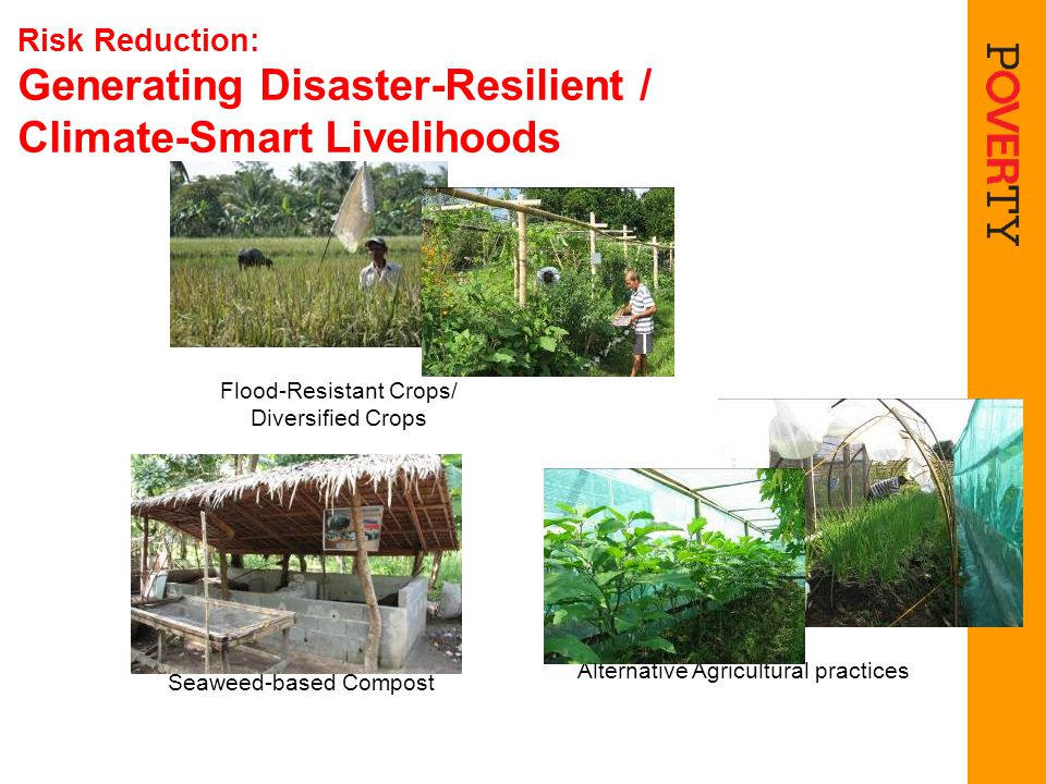 Risk Reduction: Generating Disaster-Resilient / Climate-Smart Livelihoods