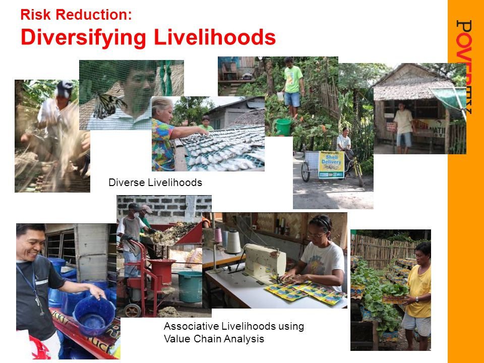 Risk Reduction: Diversifying Livelihoods