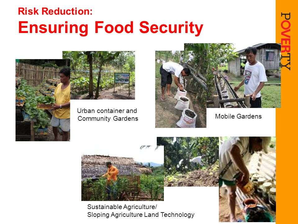 Risk Reduction: Ensuring Food Security