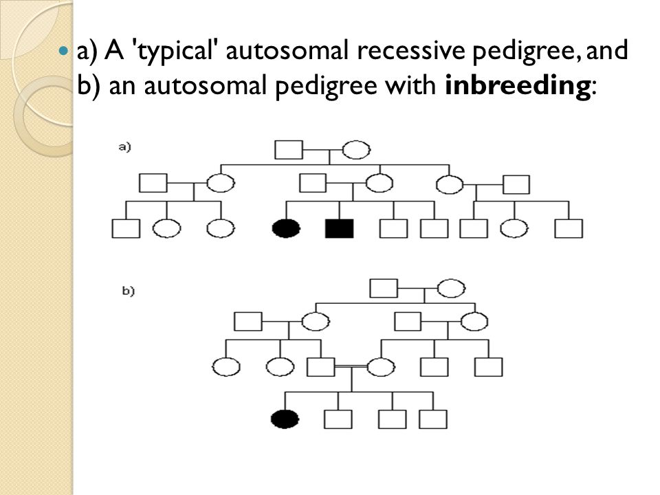 a) A typical autosomal recessive pedigree, and b) an autosomal pedigree with inbreeding: