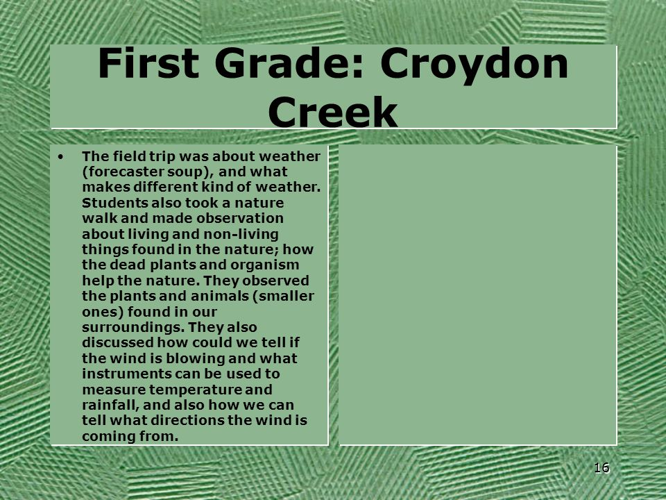 First Grade: Croydon Creek