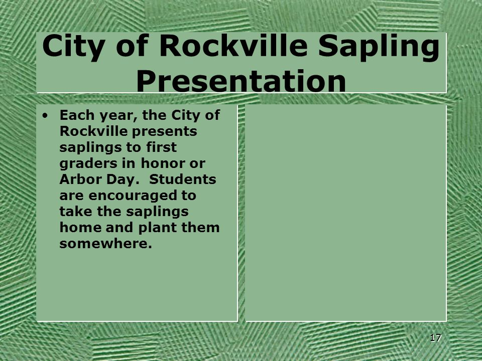 City of Rockville Sapling Presentation
