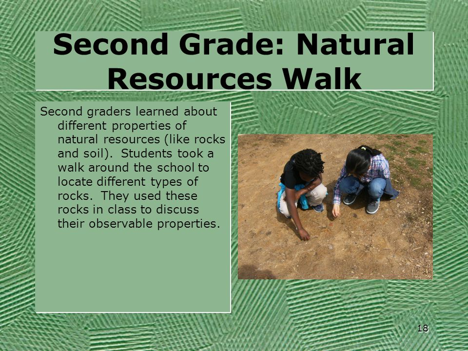 Second Grade: Natural Resources Walk