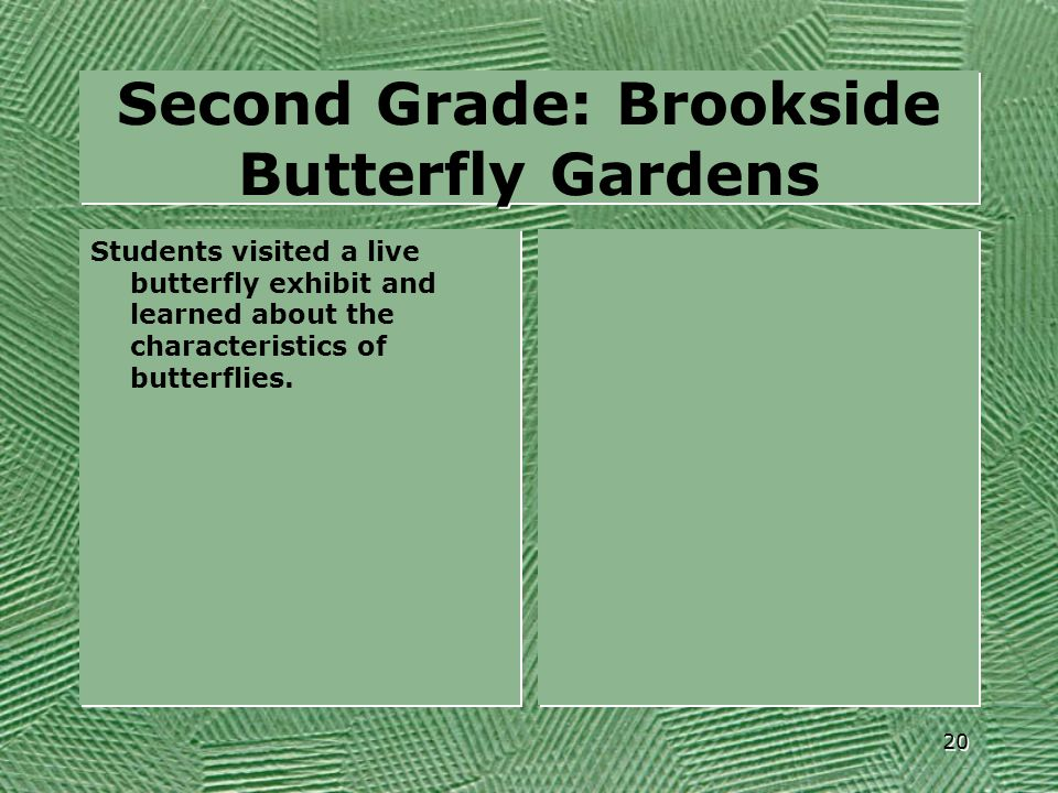 Second Grade: Brookside Butterfly Gardens