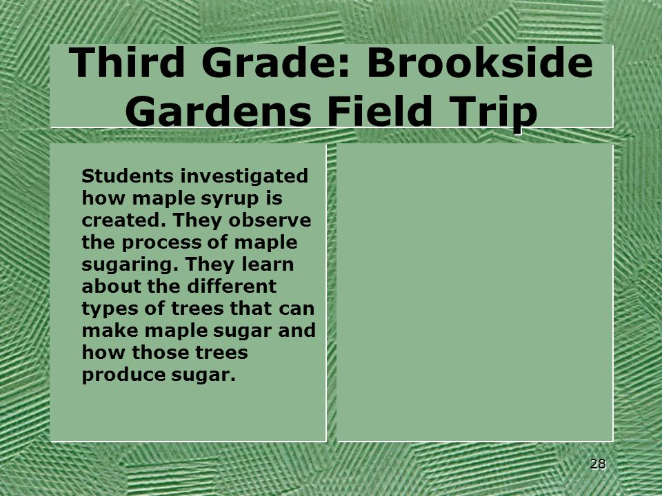 Third Grade: Brookside Gardens Field Trip