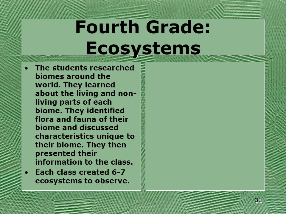 Fourth Grade: Ecosystems