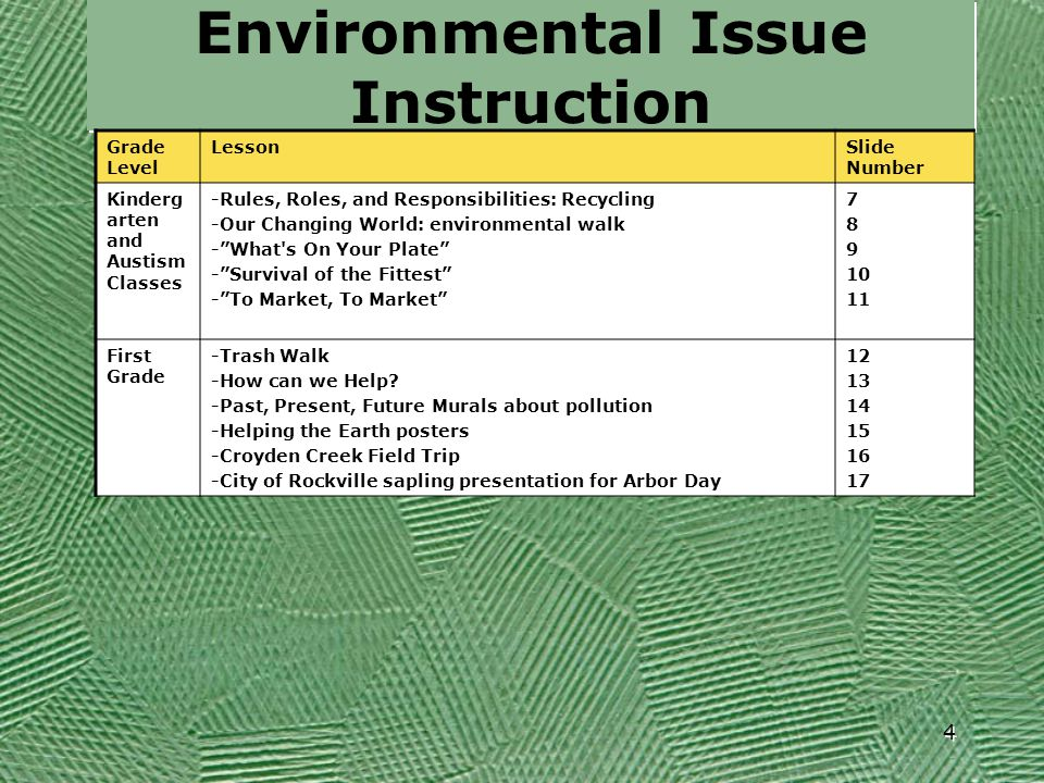 Environmental Issue Instruction