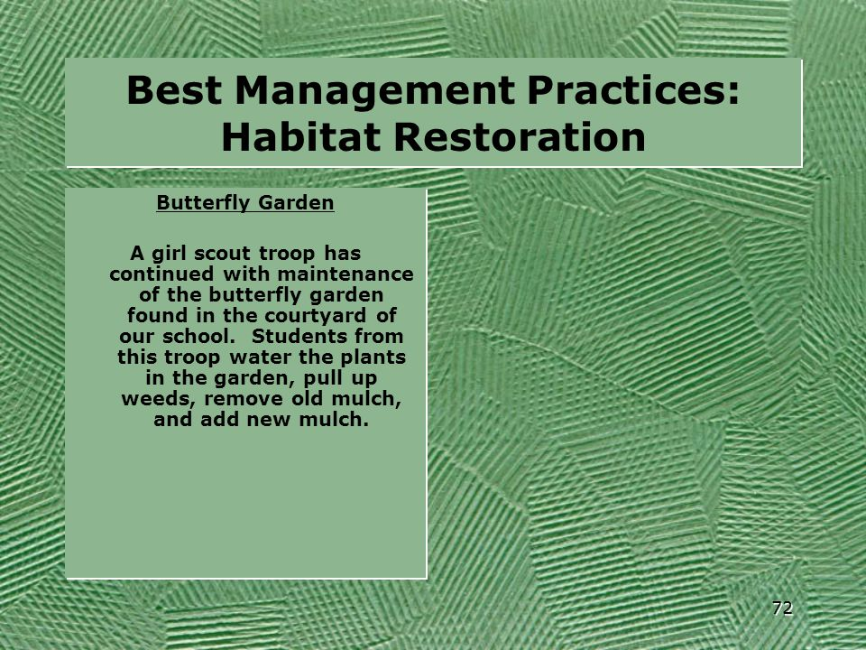 Best Management Practices: Habitat Restoration