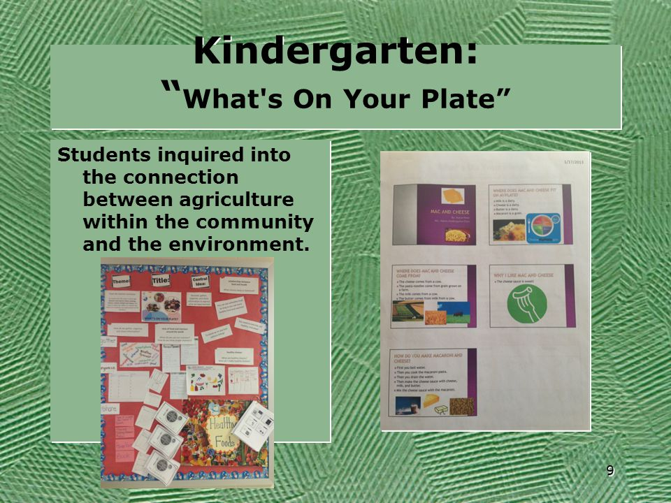 Kindergarten: What s On Your Plate