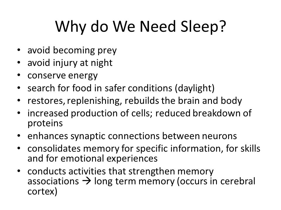 Why do We Need Sleep avoid becoming prey avoid injury at night