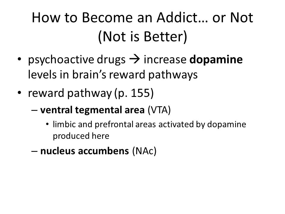 How to Become an Addict… or Not (Not is Better)