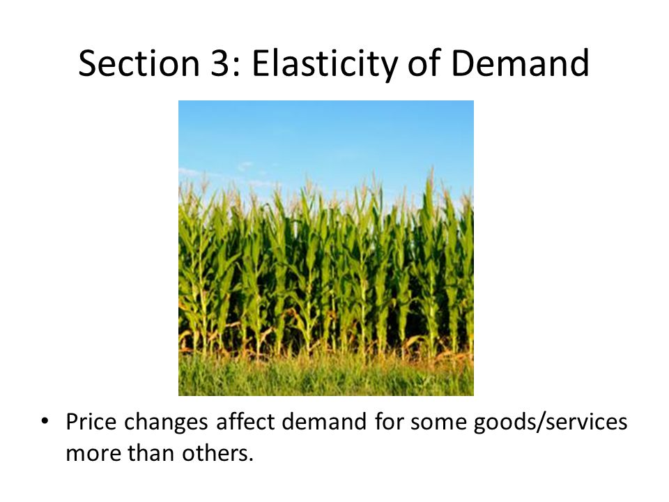 Section 3: Elasticity of Demand