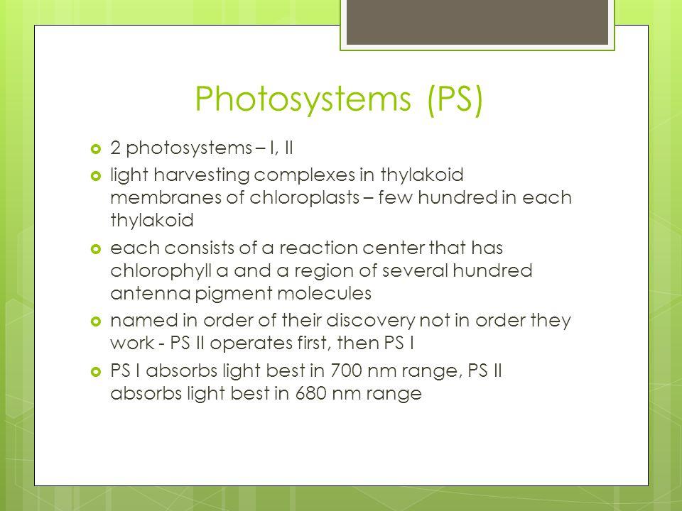 Photosystems (PS) 2 photosystems – I, II
