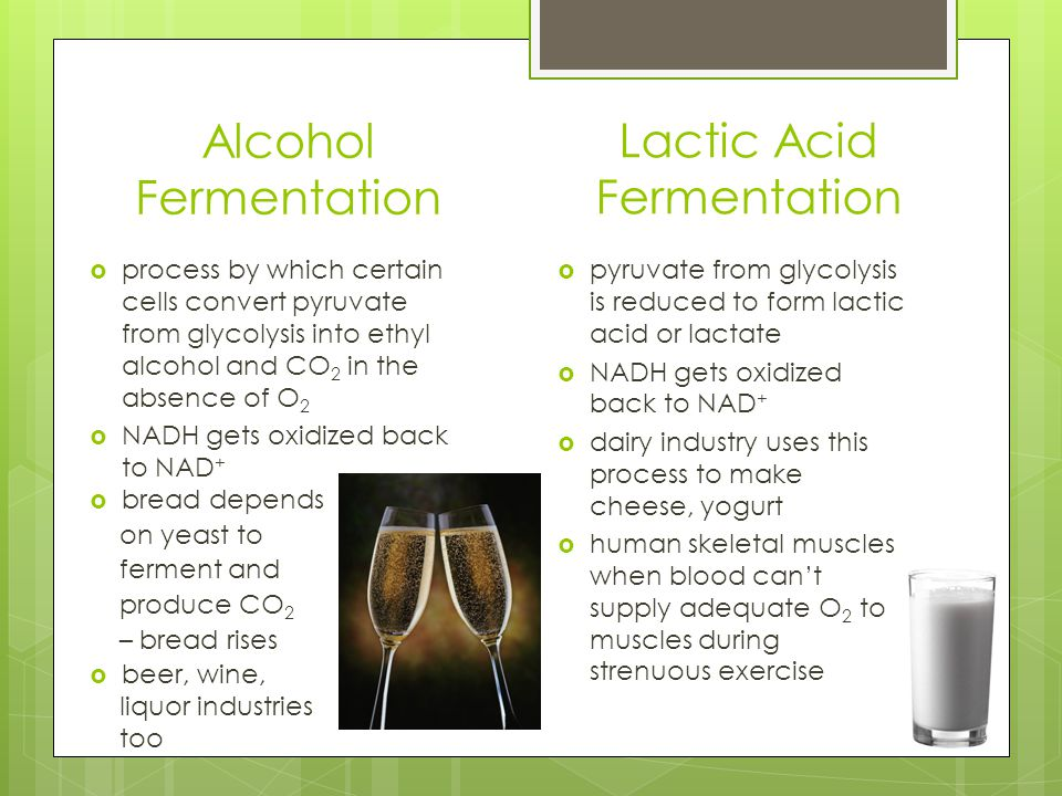 abstract for glycolysis and fermentation in yeast experiment It is a process of glycolysis in when experimenting with organisms such as yeast which was done in this experiment you more about what is fermentation.
