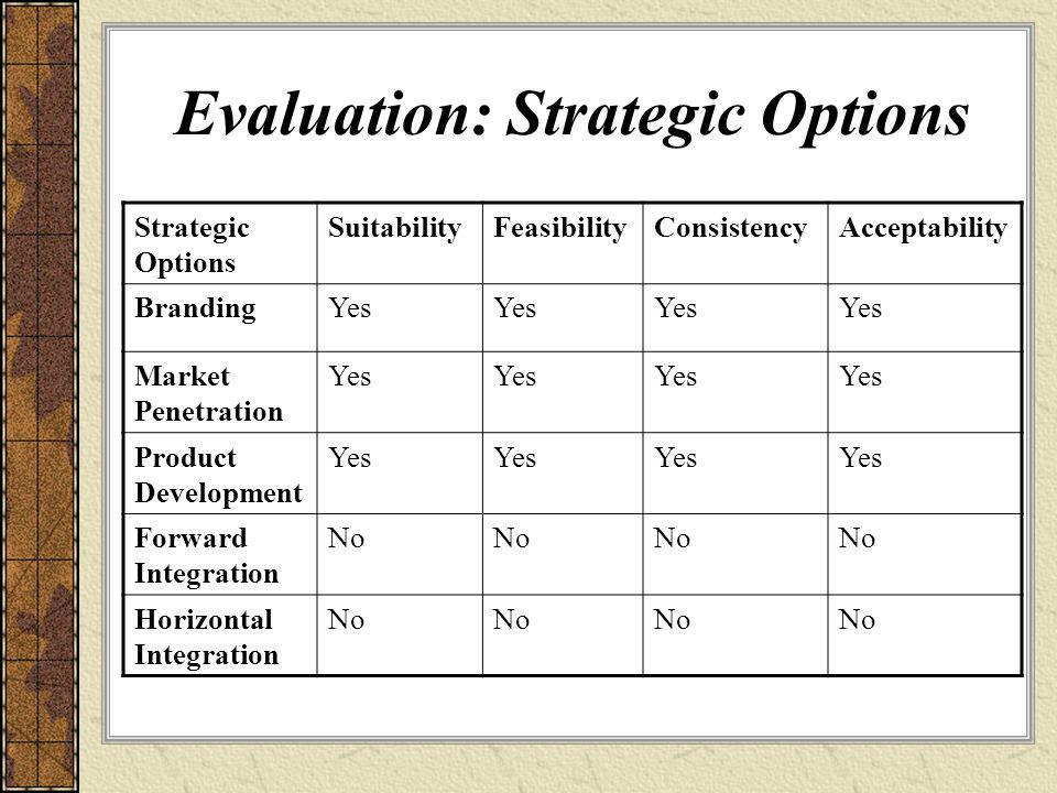 Evaluation: Strategic Options