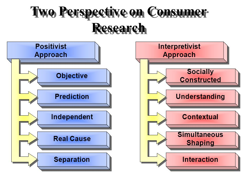 Two Perspective on Consumer Research