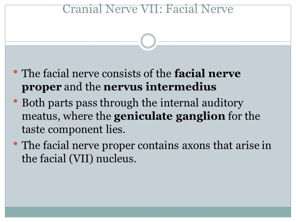 Cranial Nerve VII: Facial Nerve