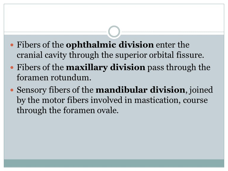 Fibers of the ophthalmic division enter the cranial cavity through the superior orbital fissure.