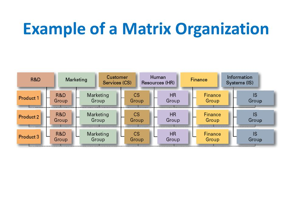Example of a Matrix Organization