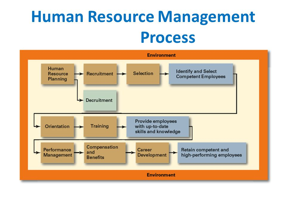 Human Resource Management Process