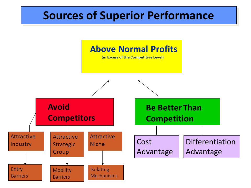 Sources of Superior Performance (in Excess of the Competitive Level)