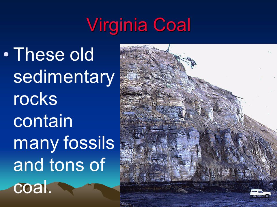 Virginia Coal These old sedimentary rocks contain many fossils and tons of coal.