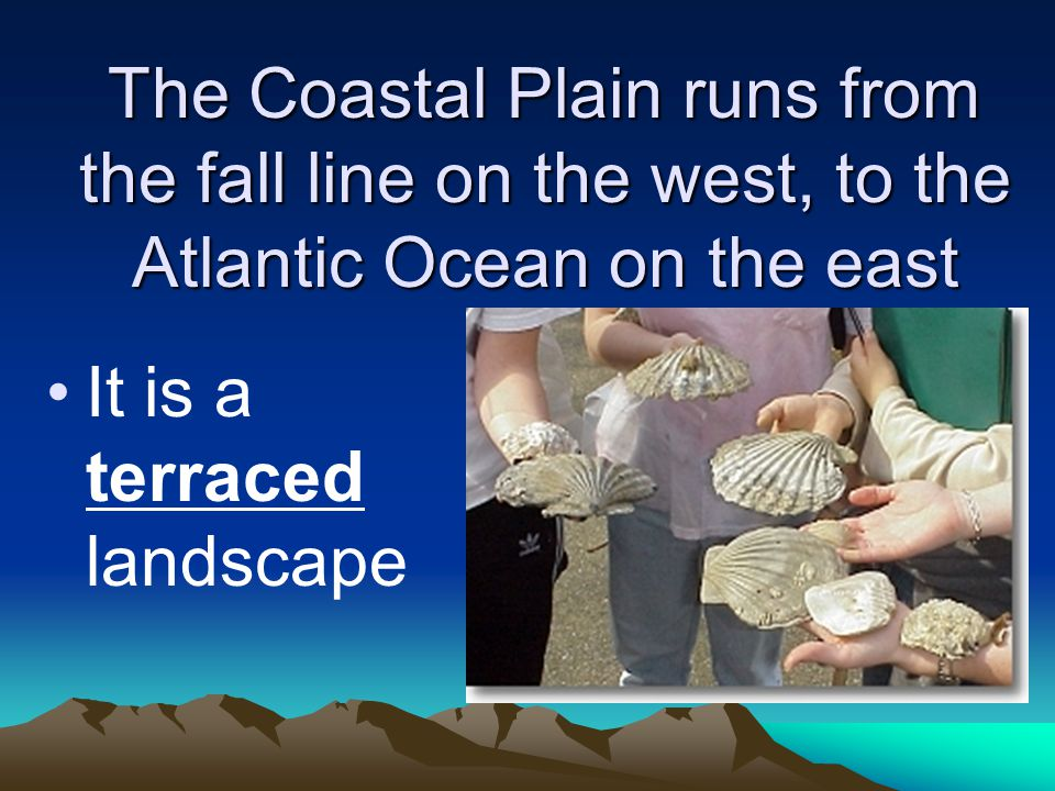 The Coastal Plain runs from the fall line on the west, to the Atlantic Ocean on the east