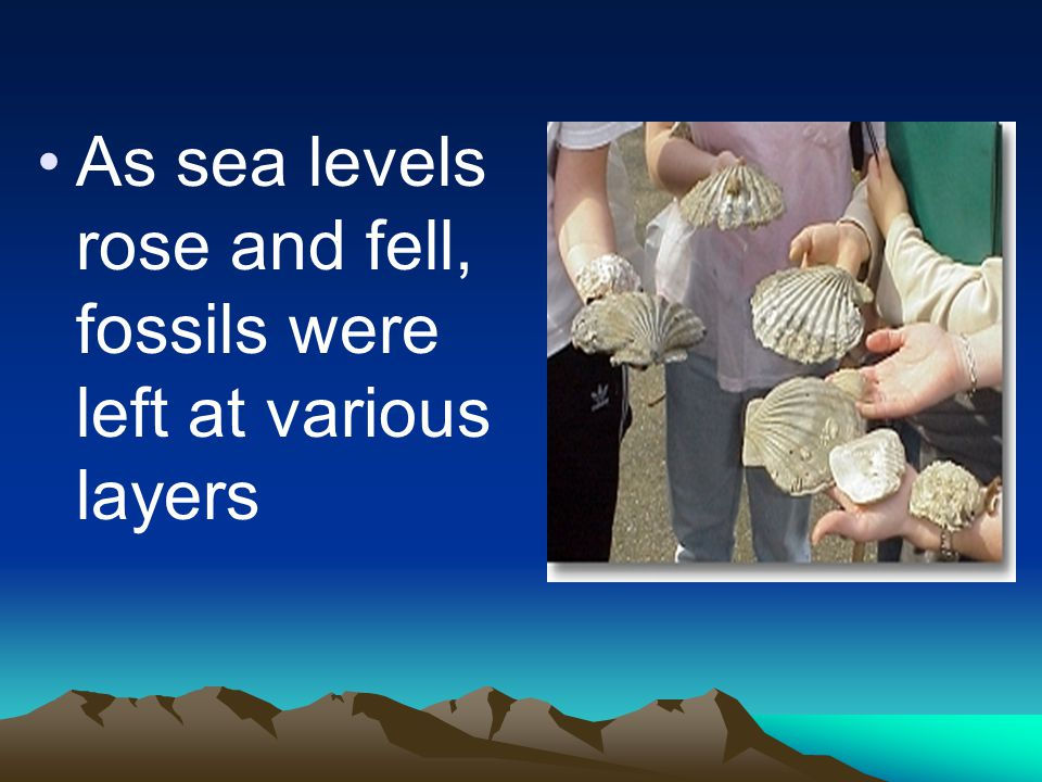 As sea levels rose and fell, fossils were left at various layers