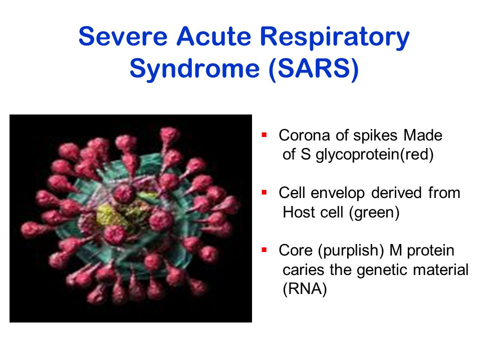 Severe Acute Respiratory Syndrome (SARS)