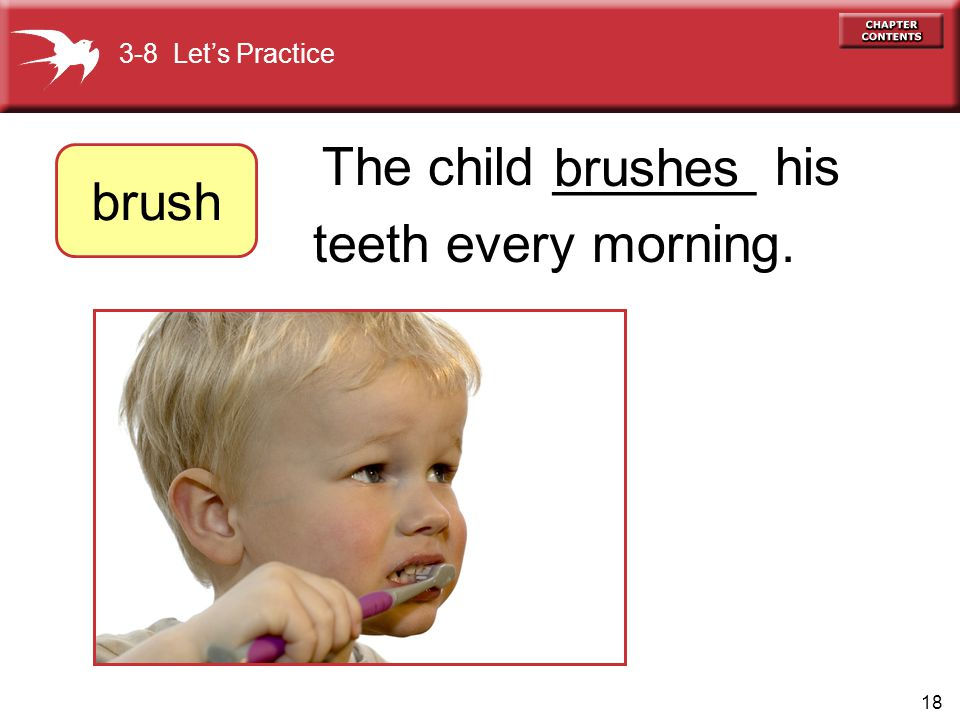brushes brush teeth every morning. The child _______ his