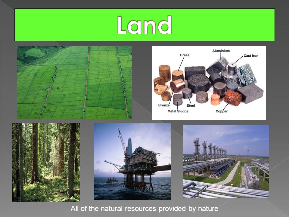 All of the natural resources provided by nature