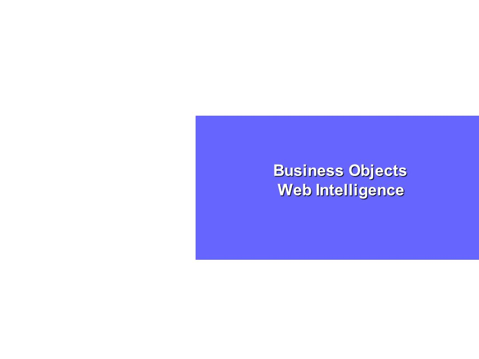 Business Objects Web Intelligence