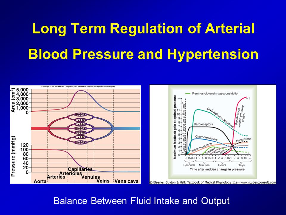 Long Term Regulation of Arterial Blood Pressure and ...