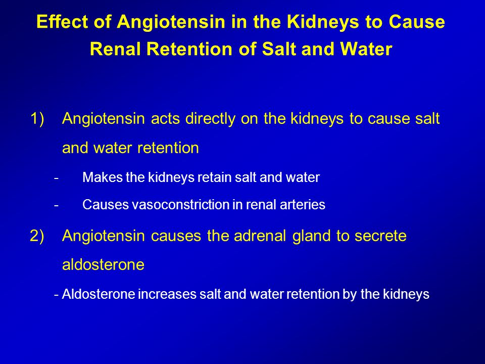 Effect of Angiotensin in the Kidneys to Cause Renal Retention of Salt and Water