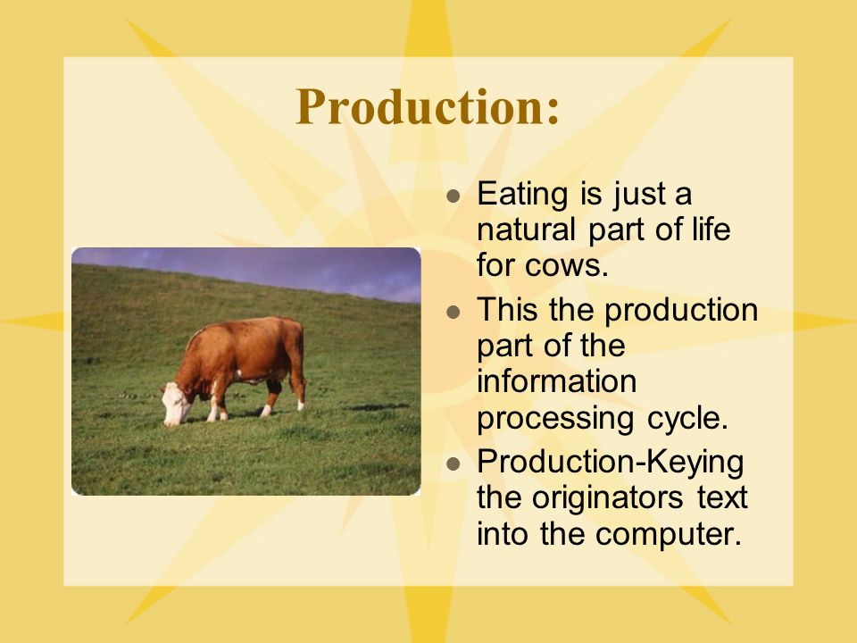 Production: Eating is just a natural part of life for cows.
