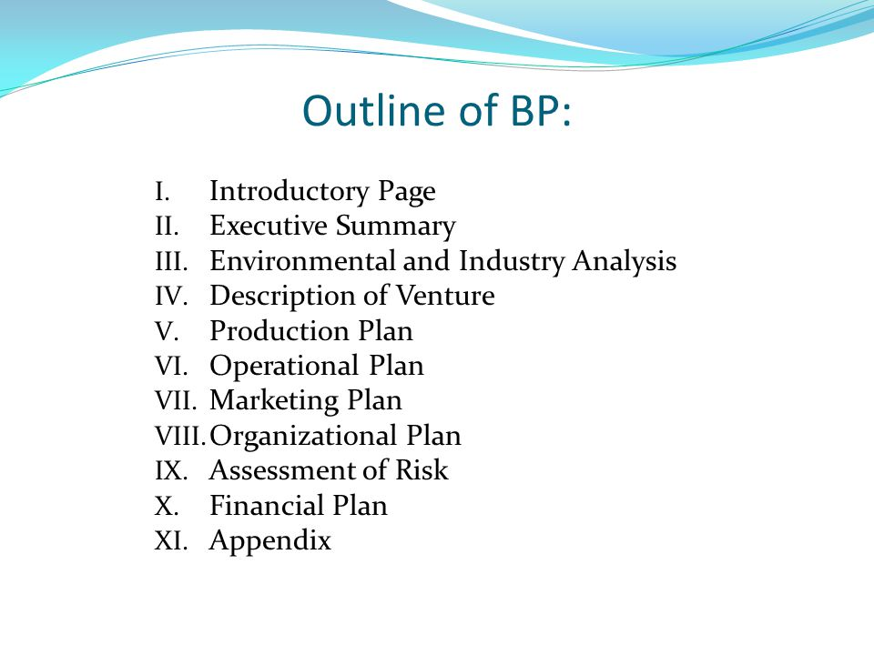 Outline of BP: Introductory Page Executive Summary