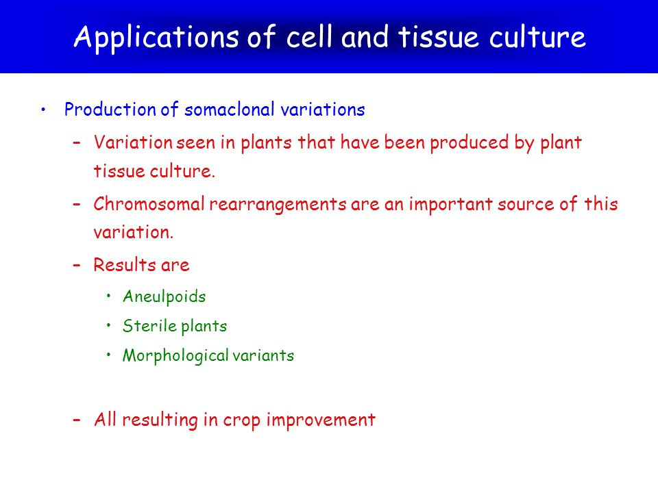 Applications of cell and tissue culture