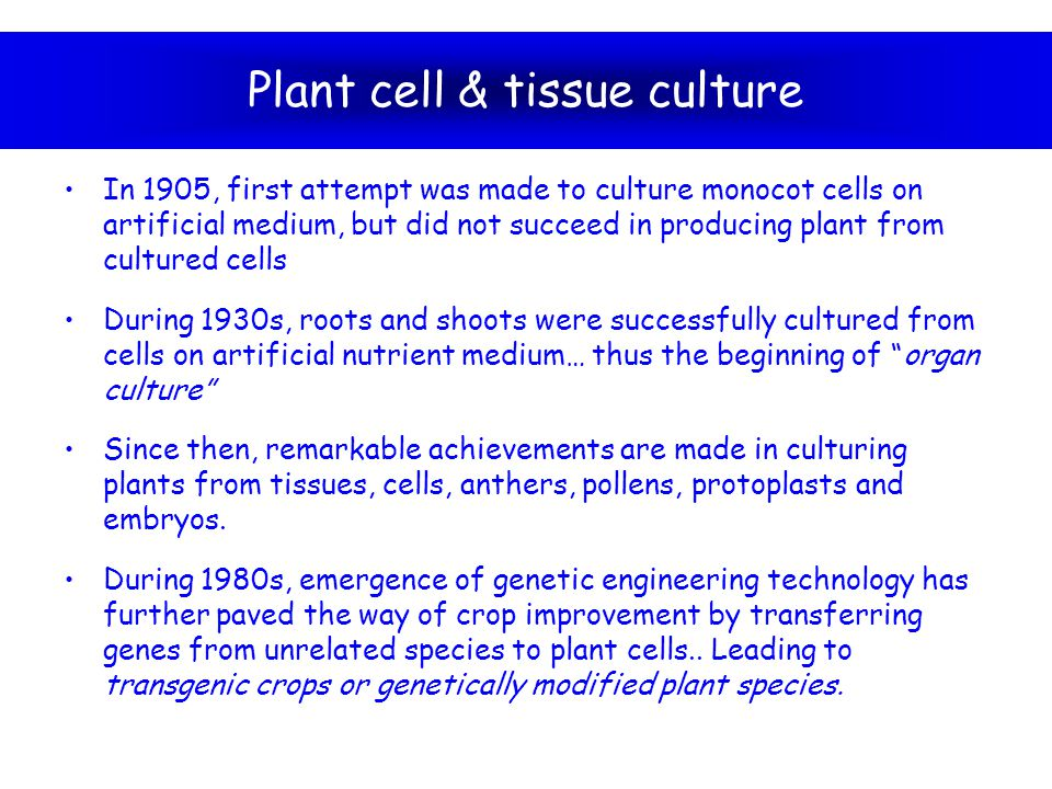 Plant cell & tissue culture